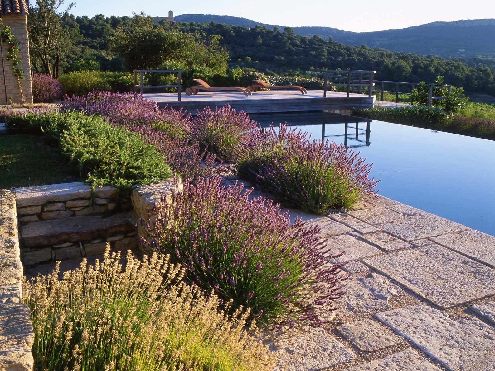 Paul Landscape Design